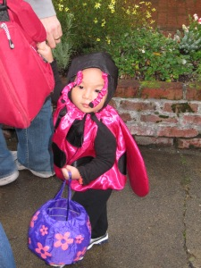 Our Little Pink Ladybug
